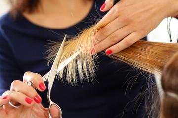 Female hairdresser hold in hand lock of hair