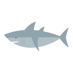 Cartoon shark vector illustration. Cool flat shark. Vector illustration with cartoon shark. Danger shark ocean character. Cartoon underwater shark marine animal. Big fish shark fish isolated.