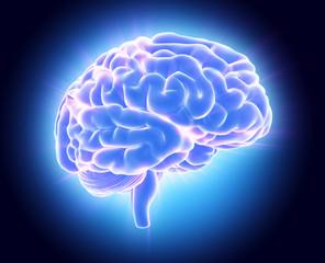 3D illustration of bright blue brain.