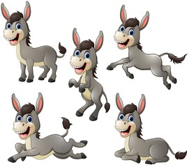 Donkey cartoon set collection