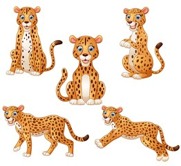 Leopard cartoon set collection