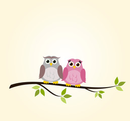 Cute owl couple vector