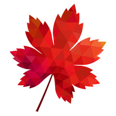 vector polygonal red maple leaf on white background