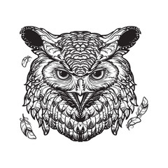 Owl sketch isolated on white background