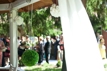 Ball of greenry hangs from the white porch