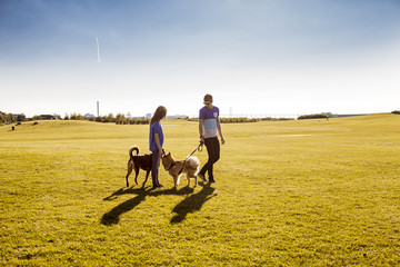 Full length of couple with dogs at park on sunny day
