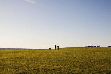Distant view of couple with dog on grassy landscape against clear sky