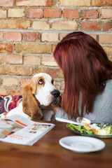 Young woman with Basset Hound at cafe table