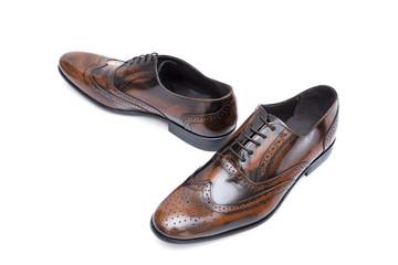 Sapato Homem Castanho Fundo Branco