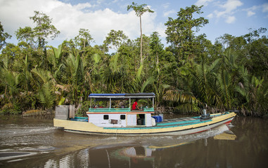 Local 'klotok' boat on Sekonyer River into Tanjung Puting Jungle, Borneo, Indonesia