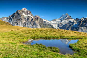 Beautiful alpine tarn,Grindelwald,Switzerland,Europe