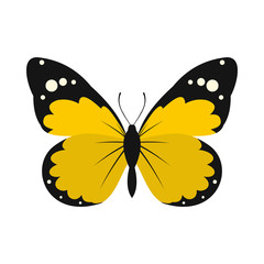 Yellow butterfly icon in flat style on a white background
