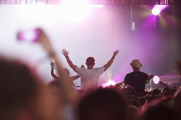 Fans Sitting On Friend's Shoulders At Music Festival