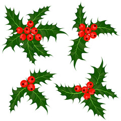 Holly berries set. Mistletoe - Christmas symbol vector illustration