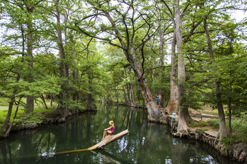 The Blue Hole in Wimberley, Texas is a popular destination for tourists and locals on hot summer days. The clear, cool water flows through cypress trees and offers a refuge from the Texas heat.