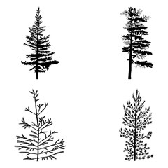 Fir trees set isolated on white background illustration. Collection of black coniferous trees silhouettes. Hand drawing.