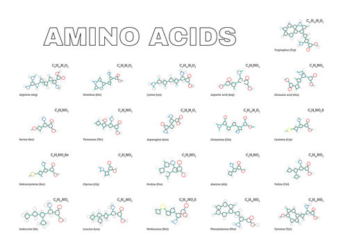 Amino acids set