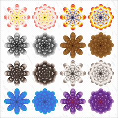 Set of Vector Flowers. Vector illustration