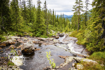 Creek in beautiful mountains and woodlands in Norway