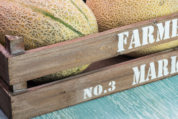 Cantaloupe melons in farmers crate.