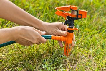 hands of gardener installing lawn sprinkler