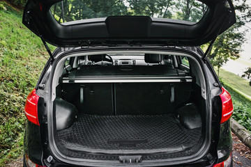 clean empty trunk of black hatchback in a forest