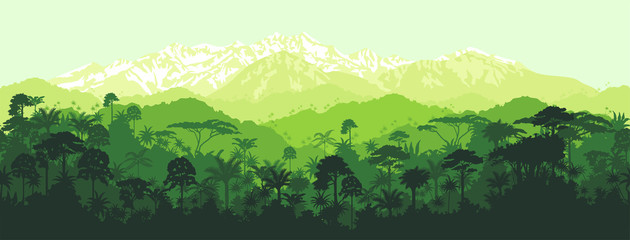 Vector horizontal seamless tropical rainforest Jungle with mountains background