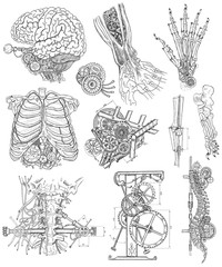 Black and white set with body parts, mechanical parts and devices