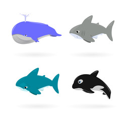 Cartoon sea animals  isolated on white for wildlife or mascot design