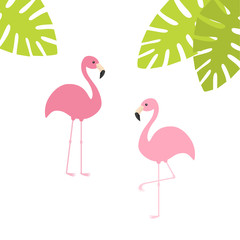 Two pink flamingo set. Exotic tropical bird. Zoo animal collection. Green palm leaves. Cute cartoon character. Decoration element. Flat design. White background. Isolated.