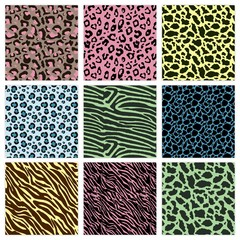 Colorful animal prints patterns