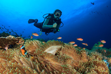 Scuba dive. Coral reef underwater and female scuba diver
