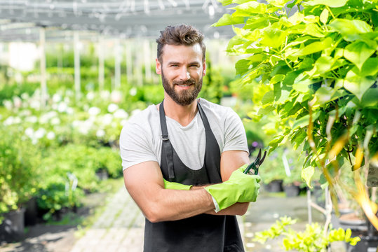 Portrait of handsome gardener in black apron and working gloves in the greenhouse.