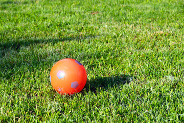 fresh green grass and a rubber playground ball