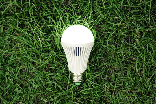 A turned on LED light bulb / Green energy concept / Using environmentally friendly appliances concept