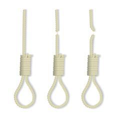 Vector gallows loops