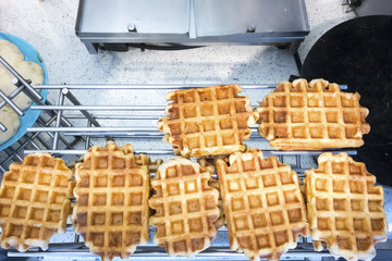 typical waffles in the netherlands