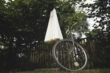 Wedding dress hangs on grape vine in garden