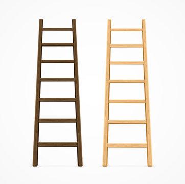 Set of Various Ladders. Vector