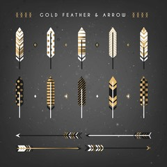 Flat gold feathers and arrows