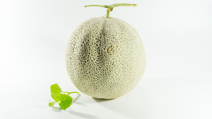 melon and white background.selective focus