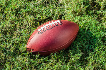 American Professional Football on Grass