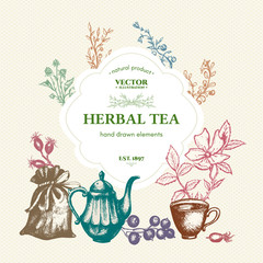 Herbal tea vintage template hand drawn ink vector