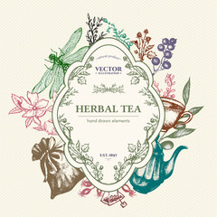 Herbal tea vector card design hand drawn vector illustration