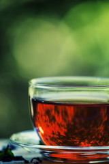 Cup of black tea on the open window on green blurred nature back