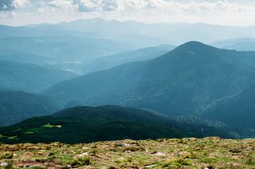 Carpathian mountains in summer