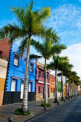 Tenerife. Colourful houses and palm trees on street in Puerto de la Cruz