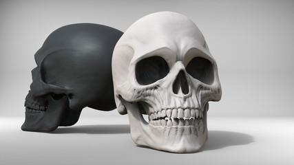 Black and white skulls - studio shot - 3D Illustration