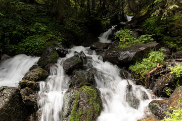 Forest stream in the mountains of Tyrol Austria