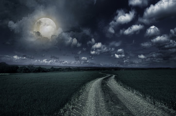 Fotomurales - Countryroad night bright illuminated large moon